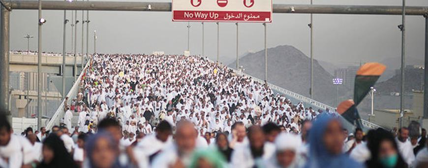 Who Himbau Wabah Kolera Menyerang Ibadah Haji