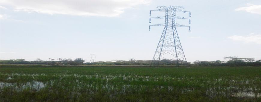 Oknum Kelurahan Pondidaha Lakukan Pungli, Bermodus Pembukaan Rekening Baru